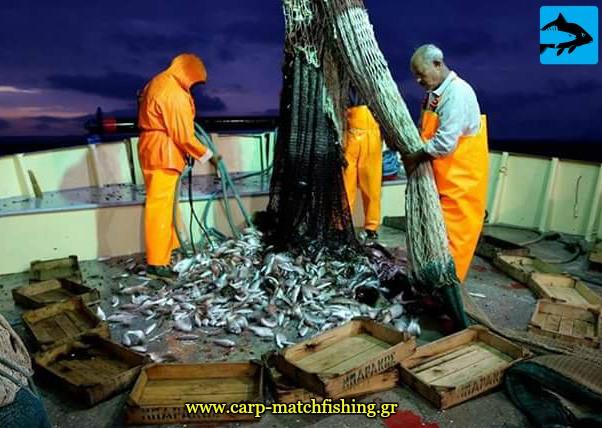 katastrofika syromena kai kyklika alieytika ergaleia peea carpmatchfishing