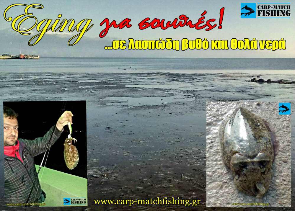 Eging soupia cuttlefish murky waters thola kai laspodi nera carpmatchfishing