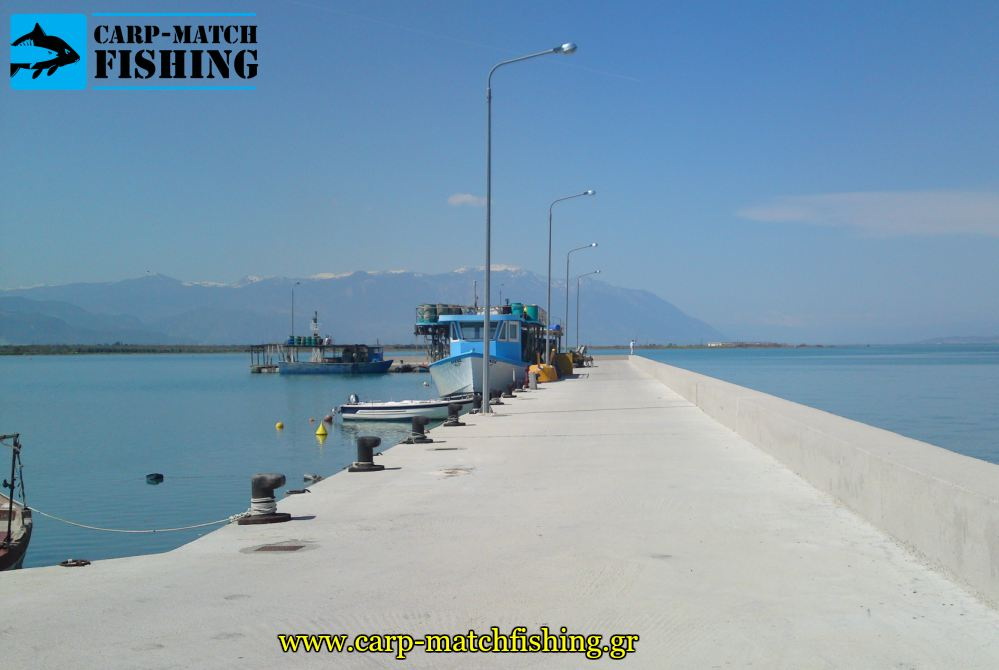 eging port carpmatchfishing