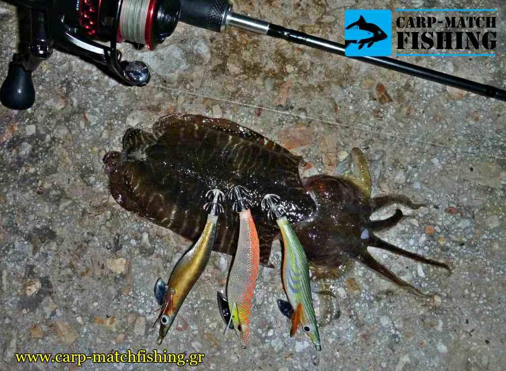 rage tackle squid jigs kalamarieres eging carpmatchfishing