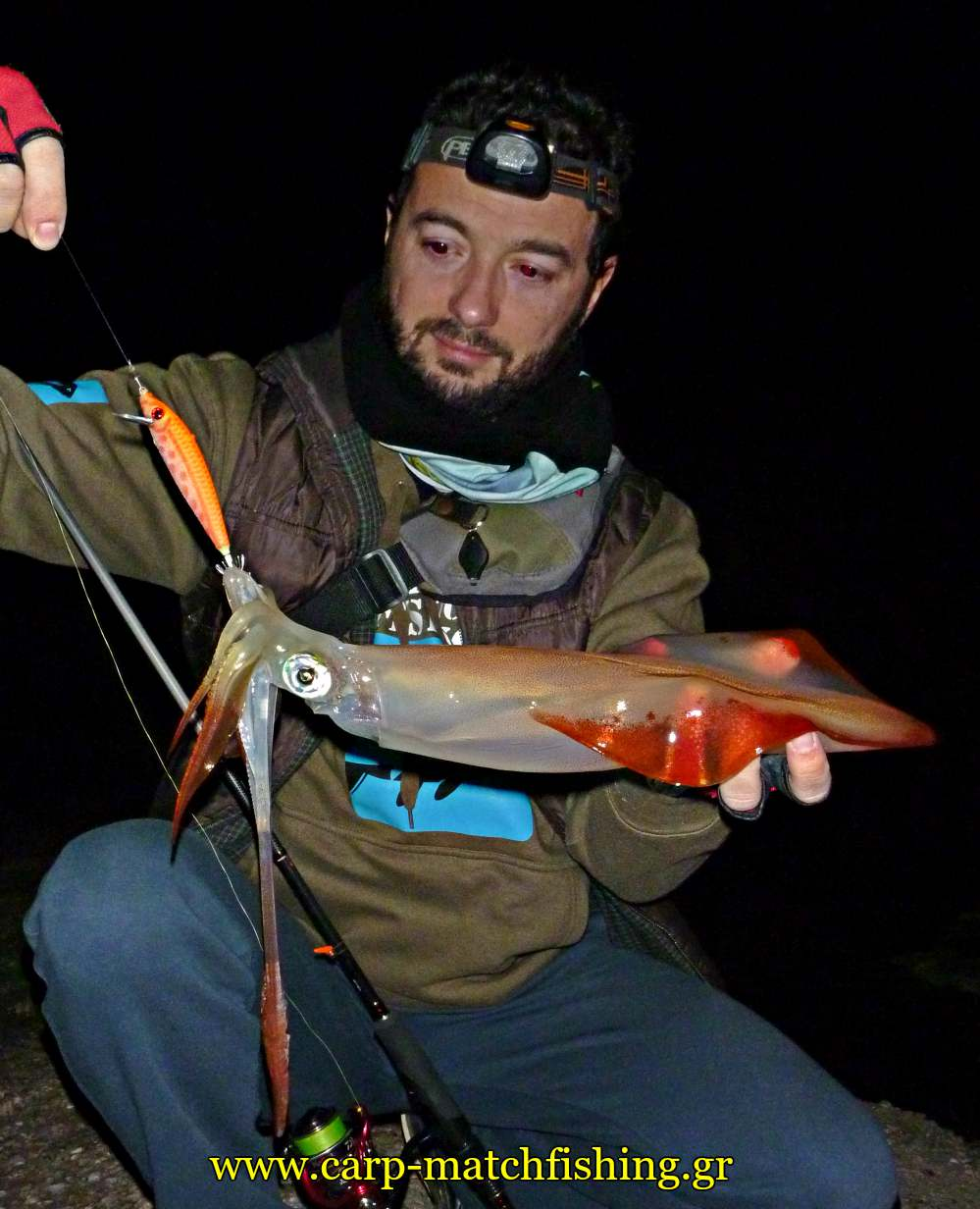 eging sfaltos big squid minnow egi carpmatchfishing