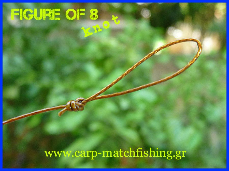 figure-of-8-knot-carp-matchfishing-gr.jpg