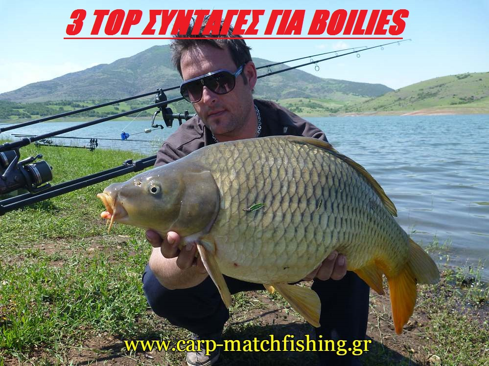 new-top-syntages-boilies-arx-carpmatchfishing