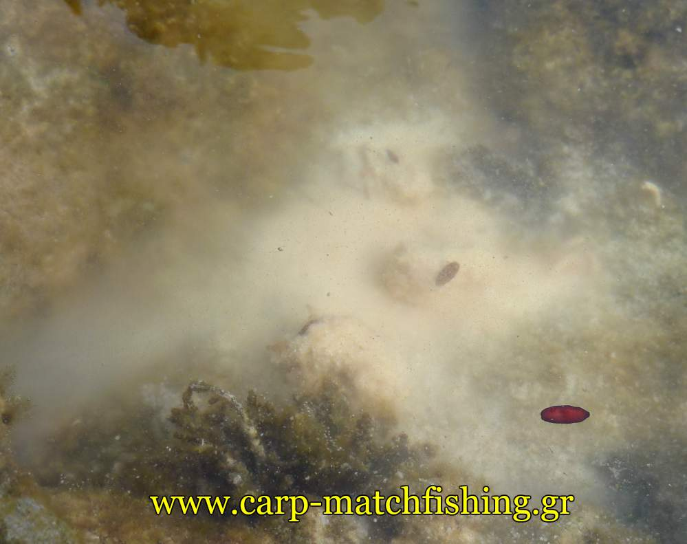 malagra-nefos-light-rock-fishing-carpmatchfishing