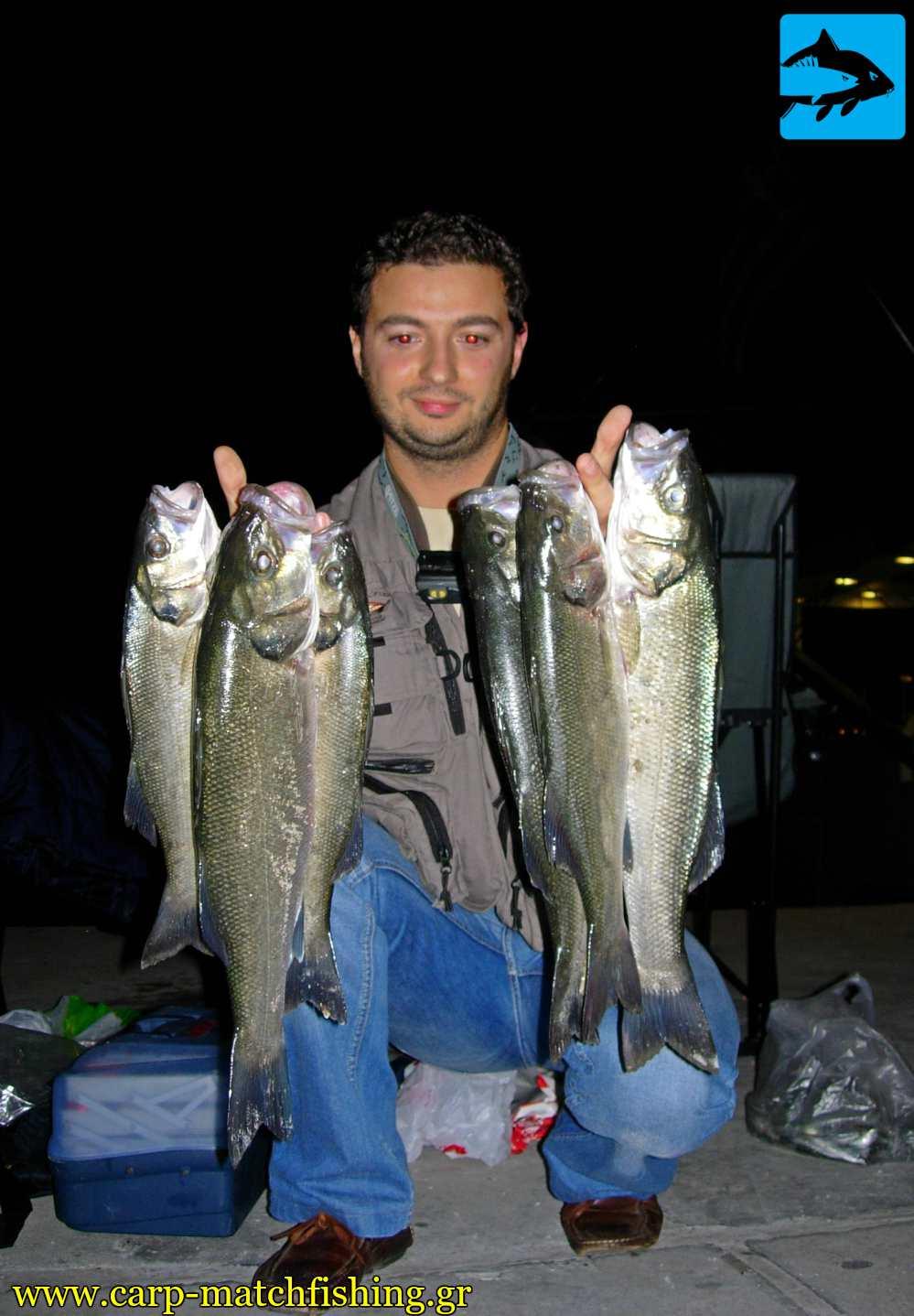 lavrakia me zontani garida me match fishing carpmatchfishing