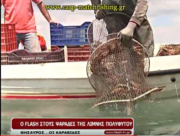 limni-polifitou-karavides-carpmatchfishing
