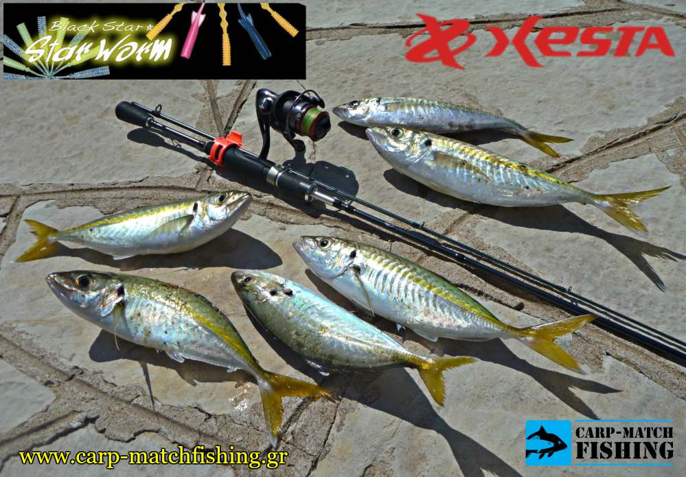 kokkalia lrf me silikones xesta star worms carpmatchfishing