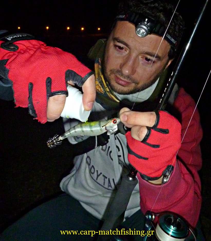 eging terabite attractor sfaltos jig carpmatchfishing