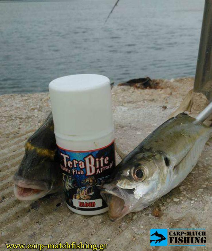 terabite kokkali tsipoura gfs carpmatchfishing
