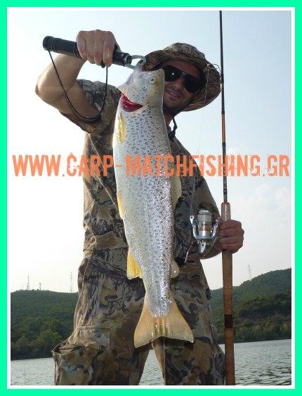 berkley-Mitchell-trout