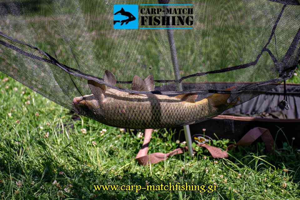 carp weight sling agonas giannena carp 2018 carpmatchfishing