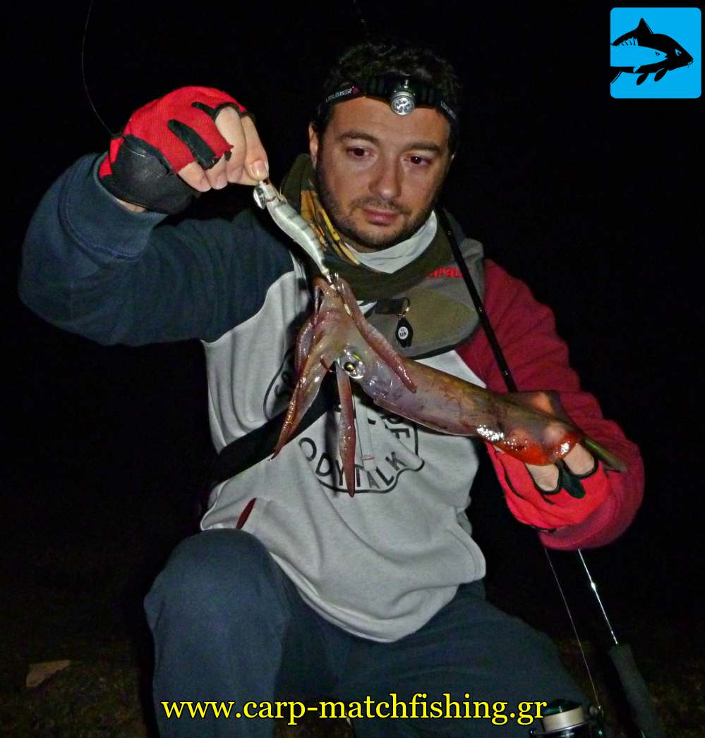 eging sfaltos squid attractors carpmatchfishing