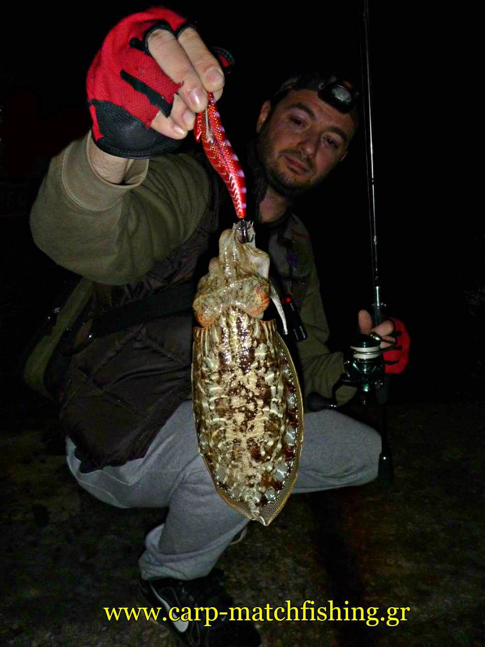 eging-psarema-soupias-cuttlefish-red-squid-jig-carpmatchfishing