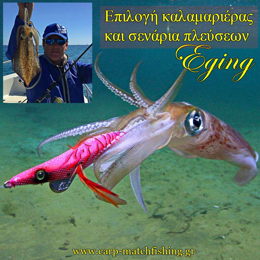 eging eging squid action jig catch more squids carpmatchfishing