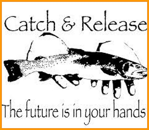 logo-catch-and-release.jpg