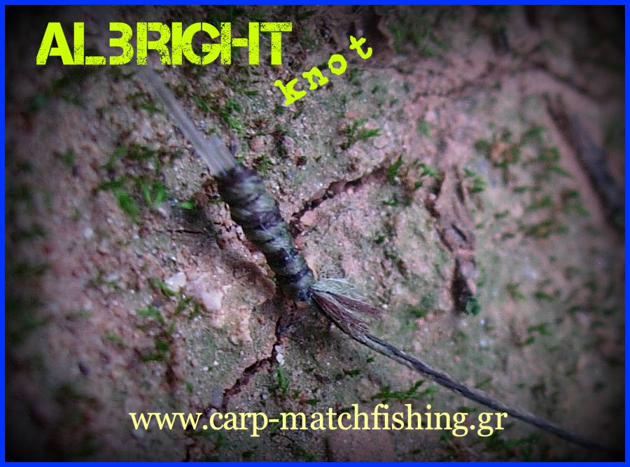albright-knot-fishing-knots-close.jpg