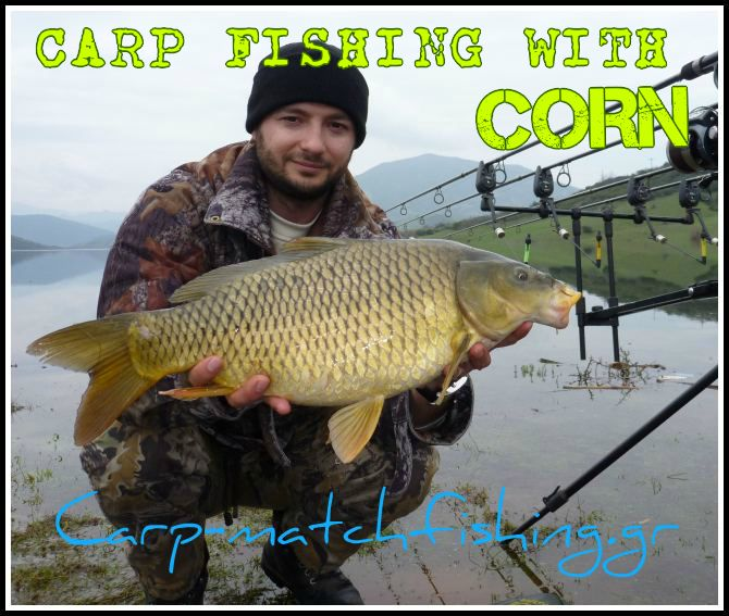 CARP-FISHING-CORN.jpg