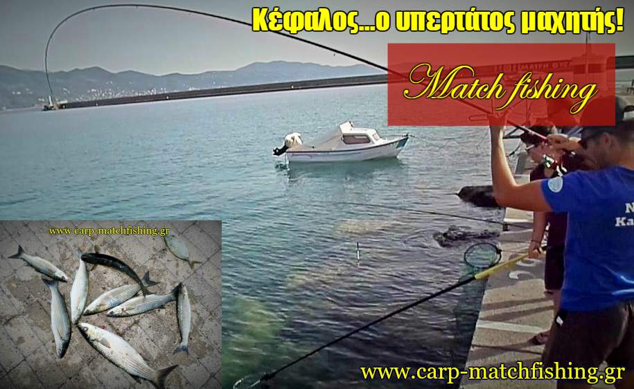 kefalos-match-fishing-2-big-curve-carpmatchfishing