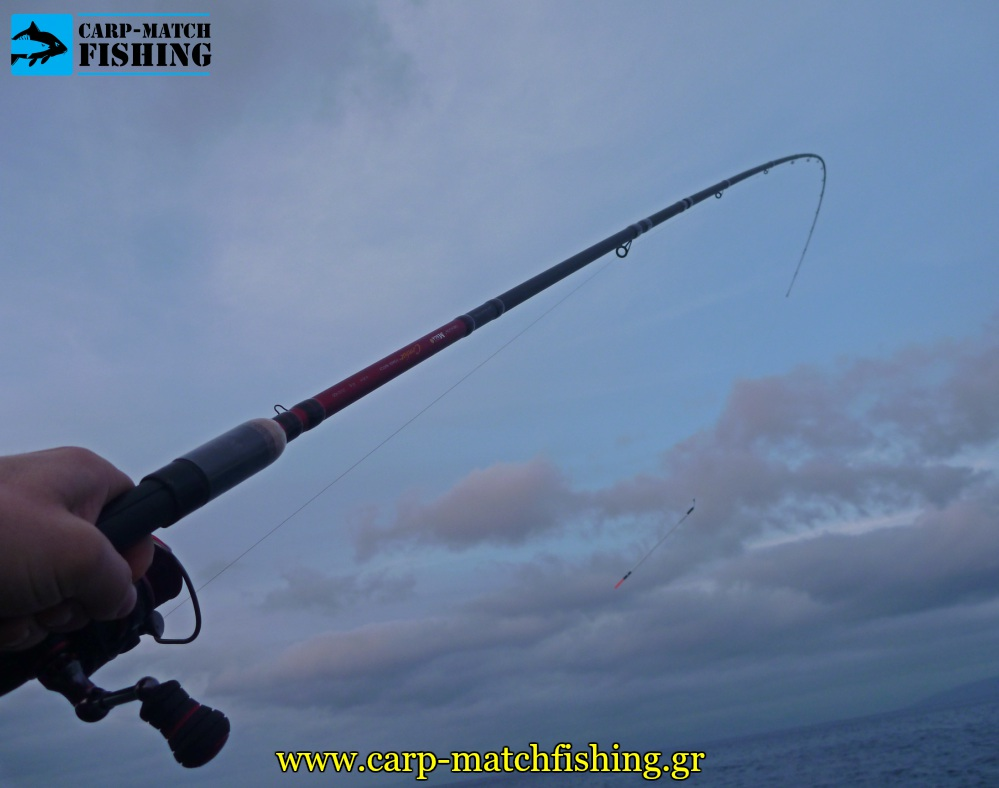 match rod fight fish rod curve action carpmatchfishing