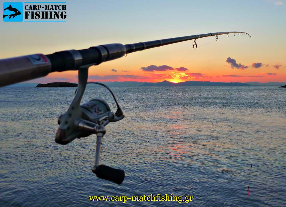 match rod sunset psarema carpmatchfishing