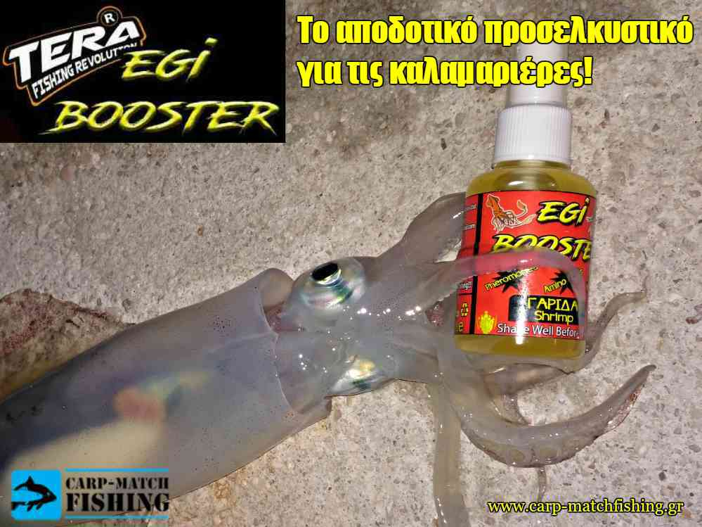 egi booster 1 squid carpmatchfishing