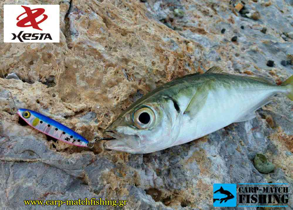 xesta kokkali blue afterburner mini xesta carpmatchfishing