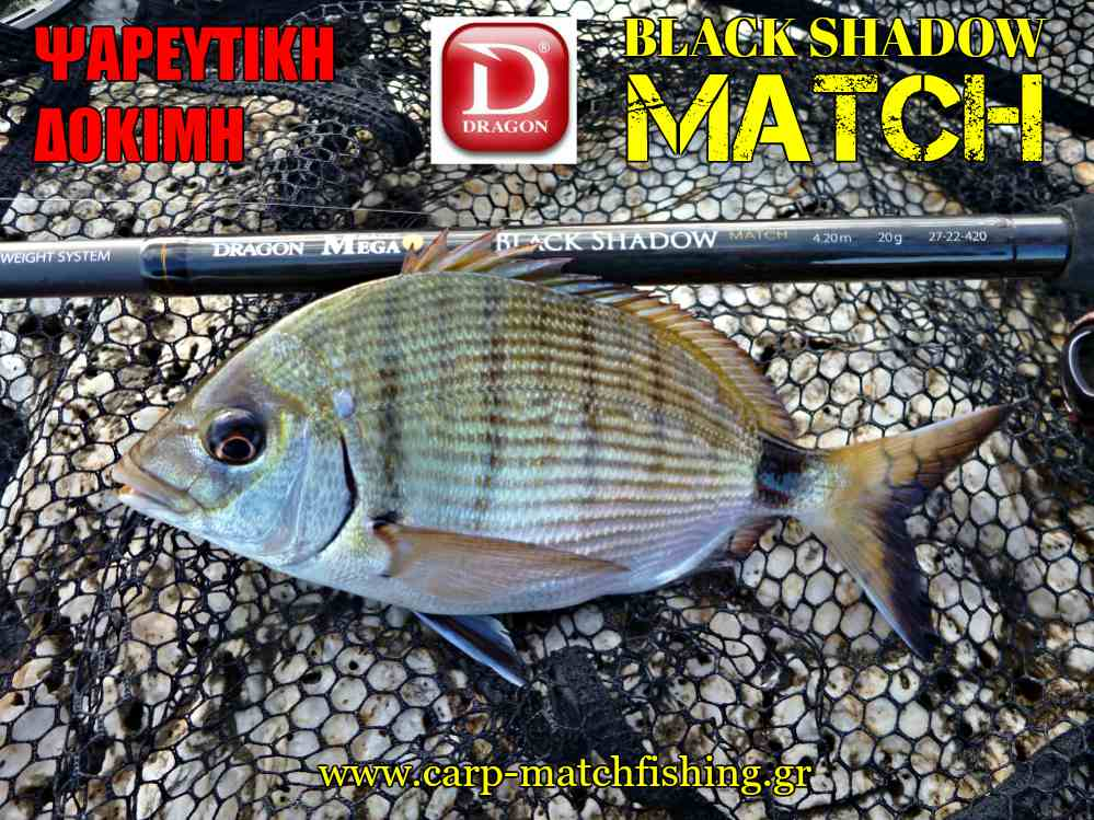 sargos-psarema-dragon-black-shadow-match-carpmatchfishing