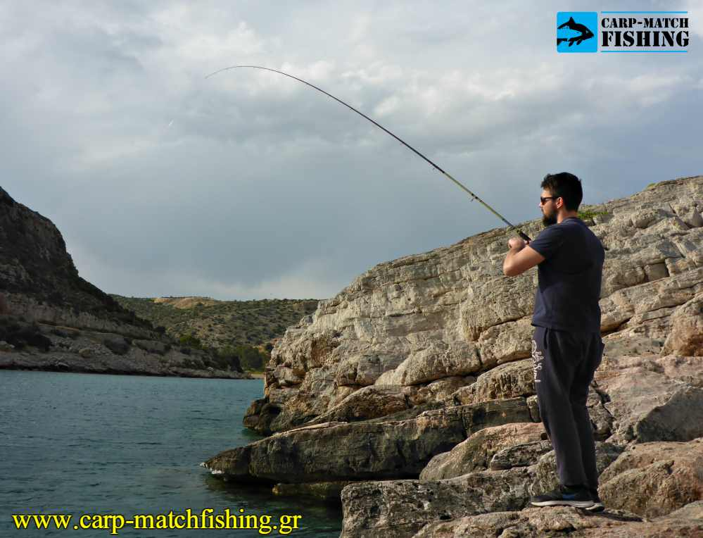 native match vega rod curve rockfishing carpmatchfishing