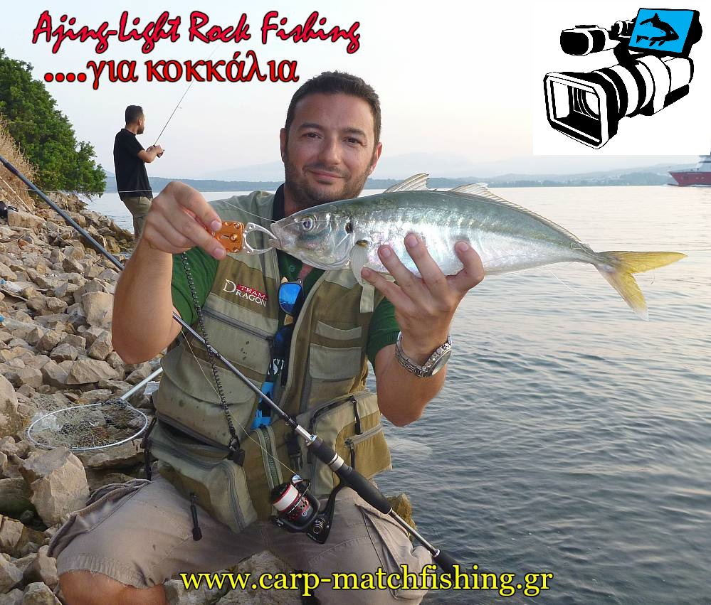 ajing-lrf-kokkalia-carpmatchfishing-video1